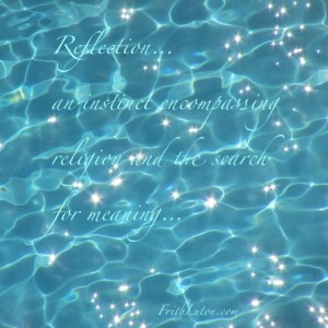 Quote: Reflection… an instinct encompassing religion and the search for meaning.